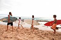 Four young friends carrying surfboards on beach