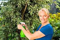 Mature woman spraying plant (thumbnail)