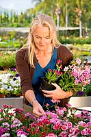 Woman with flowers at garden centre (thumbnail)