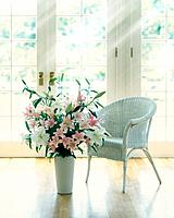 Chair and vase of flowers by window, computer graphic