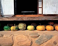 gate, door, architecture, korea, pumpkin, house