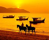 Fishing boats come close to the shore at Batu Ferringhi beach to fish in the waters as the sun goes down. People take horseback rides along the shore