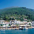 Ionian,Cephallonia. Town. Houses by water. Bars,cafes. Boats moored.
