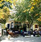 Ionian,Cephallonia. Cafe. Tables,chairs in shade of trees. People seated.