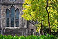 Saint Patrick's Cathedral in Dublin, also known as The National Cathedral and Collegiate Church of Saint Patrick, Dublin or in the Irish language as Á...