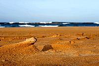 Miniature sand dune peak