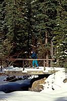 Rockies. Kananaskis county. Person on skis. Bridge,snow.