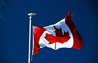 National flag. Emblem. Maple leaf. Red and white. Blue sky. British Columbia.