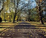 Battersea Park is a 200 acre green space in Battersea,London,England. It is situated on the south bank of the River Thames opposite Chelsea. It was op...
