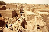 The house of Djenne are built from mud. The advantage of using mud to build is that it is cheap and easy to find. The houses are cool inside even thou...