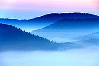 Dawn ridges at morning in spring, Ruin Drachenfels, Busenberg, Pfaelzerwald, Rhineland_Palatinate, Germany