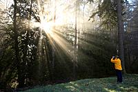 a person photographs the sun shining through morning fog and trees, happy valley, oregon, united states of america