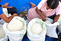 Bolivia, Rurrenabaque, selling rice.