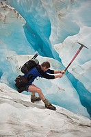 Glacier guide cuts steps in crevasse wall, Franz Josef Glacier, Westland National Park, West Coast of South Island, New Zealand