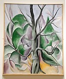 Grey Tree, Lake George, 1925, by Georgia O'Keeffe, American, Oil on canvas, 36 x 30 in , 91 4 x 76 2 cm, Metropolitan Museum of Art, Modern Art Galler...