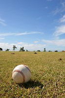 Ball Park, Baseball Park, Honolulu, Oahu Island, Hawaii, USA