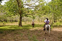 Riding horseback through the wilderness of the Osa Peninsula in southern Costa Rica