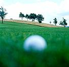 Golf ball on lawn
