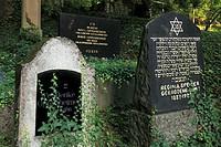 D-Heidelberg, Neckar, Rhine-Neckar area, nature reserve Neckartal-Odenwald, Bergstrasse, Odenwald, Baden-Wuerttemberg, Jewish cemetery on the Bergfrie...