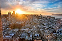 View from Coit Tower onto the city at sunrise, San Francisco, California, USA, America
