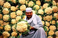 Man selling cauliflowers, Cairo, Egypt