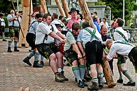Erection of Maypole, Sindelsdorf, Weilheim_Schongau, Bavarian Oberland, Upper Bavaria, Bavaria, Germany