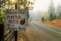 Road sign for pumpkin patch, Goyettes Ranch Apple Farm, Camino Eldorado County, California