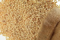 Grain , pulses chowli dal split without shell black eyed beans cow pea in jute sack spread on white background