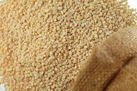 Grain , pulses black gram and urad and udina without shell in jute sack spread on white background