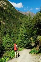 Trekker , Chame , Nepal
