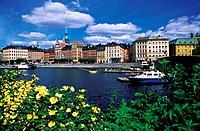 Gamla Stan _ Stockholm, Sweden
