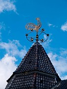Traditional Weathercock vane on a roof vertical