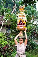 Indonesia, Asia, Bali island, Ubud, Offerings, offering, exotic, tradition, colourful, happy, quite, pink dress, woman
