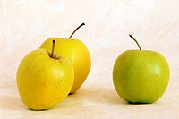 Three yellow apples on painted background