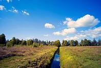 Ahlenmoor, Ahlen mire, mire ditch, Germany, Lower Saxony, Floegeln