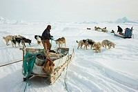 two Inuit hunters with dogsleds at Cape Tobin, Greenland, Ostgroenland, Tunu, Ittoqqortoormiit