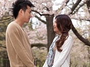 Young happy Asian couple in a park under blooming cherry trees