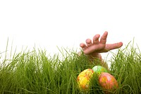 Kids hand and easter eggs hidden in fresh green grass