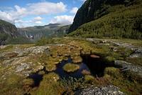 bog and pond in landscape of Aurlandsdalen, Norway