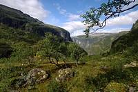 mountain scenery of Aurlandsdalen, Norway