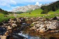 view from a mountain meadow with a brook at the Alpstein massif with the highest mountain Saentis 2502 m, Switzerland