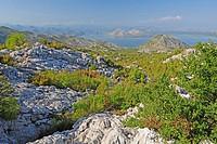 karst scenery at Lake Skadar, Montenegro, Lake Skutari