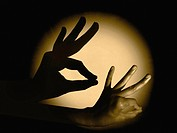 Human Hand with Shadow