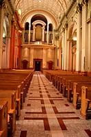 Cathedral Pews and Organ