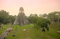 Tikal Pyramid ruins UNESCO site, Guatemala
