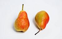 Pears jack