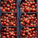 Packages of cherry tomatoes