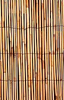 Deep golden bamboo texture background