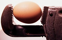 Scuffed monkey wrench holding a brown egg
