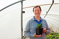 Man holding pot plant in polytunnel, portrait